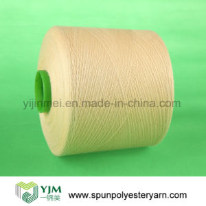 Color Spun Polyester Dyed Yarn pictures & photos