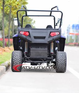 1000W Shaft Drive Electric UTV with Brushless Motor pictures & photos