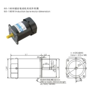 AC Gear Motor Induction Gear Motors pictures & photos