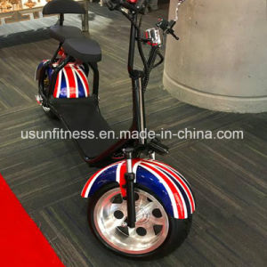 Green Travelling Harley Mini Motorcycle Citycoco Electric Motorcycle with Ce pictures & photos