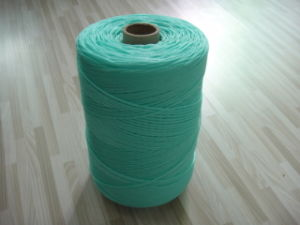 High Quality P. E. Braided Rope pictures & photos