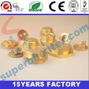 Brass Flange Fittings for Heating Element pictures & photos