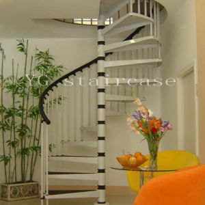 Powder Coated Steel Spiral Staircase (YG9002-7)