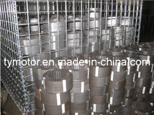 Motor Stator pictures & photos