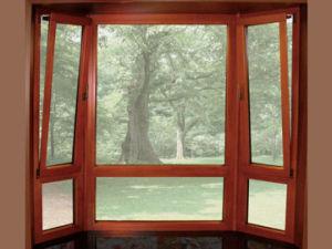 Aluminium Window (pH-4423) pictures & photos