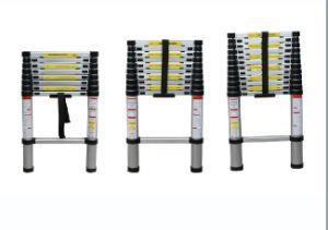 Export Expert 3.2m 10 Steps Aluminum Telescopic Ladder pictures & photos
