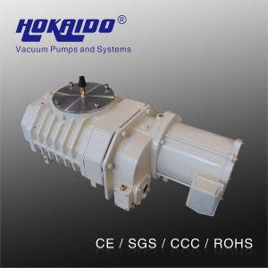 Vacuum Degassing Machine Used Roots Vacuum Pump (RV0900)