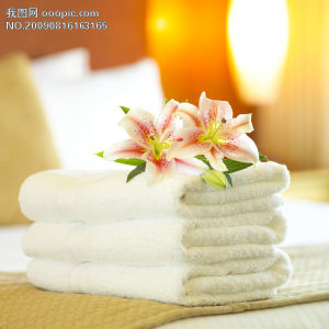 Hotel White Towel