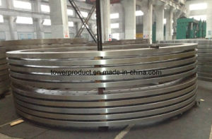 Wind Power Flange (MGS-WF024) pictures & photos