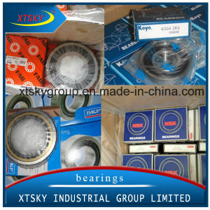 Xtsky Deep Groove Ball Bearing (6201ZZ) pictures & photos