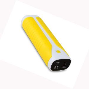 High Capacity 10400mAh Portable Power Bank (LCPB-AS009) pictures & photos