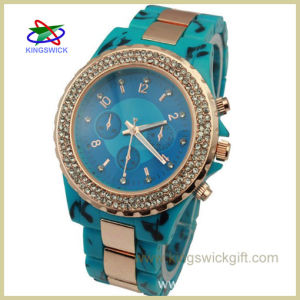 2013 Hot and Customized Logo Plastic Watch (OW2708B)
