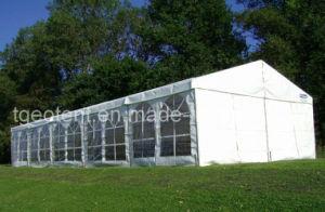 Party Garden Tent (TGEO4020)