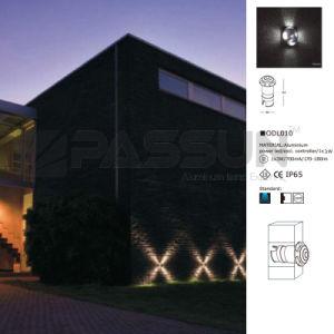 LED Decoration Lighting Mushroom (ODL010)
