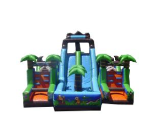 Inflatable Slide Combo (FS-568)