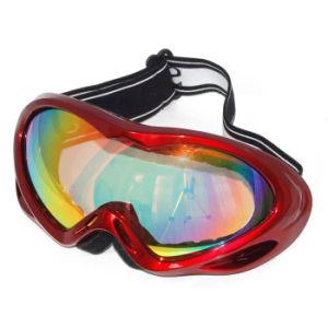 Glasses (MD-882-1)