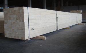 Eucalyptus LVL for Big Machines Package LVL Lumber