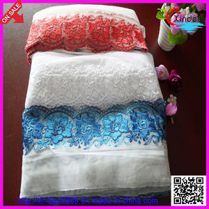 Embroidery Polyester Lace (XDEL-001) pictures & photos