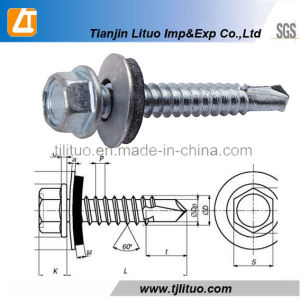 Drilling Screws with EPDM Bondes Washers/Drilling Screws pictures & photos