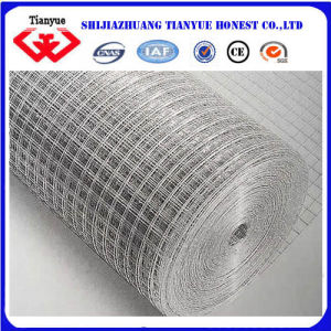 Carbon Steel Welded Wire Mesh (TYB-0037) pictures & photos