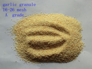 Chinese Garlic Granule pictures & photos