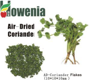 Ad-Coriander Flakes
