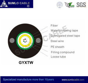 2/4/6/8/12cores Fiber Optic Cable (GYXTW) pictures & photos