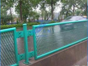 Road Anti-Glare Metal Fence in Anping Tianshun pictures & photos