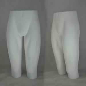 Fiberglass Male Mannequin, Underware Mannequin pictures & photos