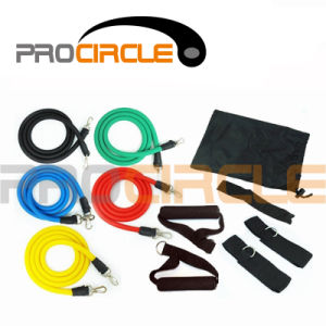 Fitness Equipment 11 PCS Loop Resistance Band Set (PC-RB1038) pictures & photos