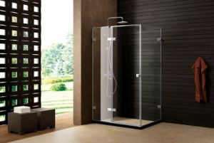 Top Quality Hinge Door Shower Room\ Red DOT Competition Shower Cabin\ Shower Enclosure pictures & photos