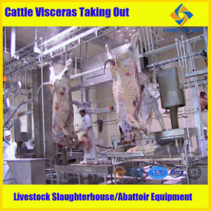 Cattle Slaughter Machine pictures & photos