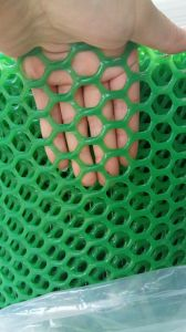 Hexagonal Plastic Flat Net pictures & photos