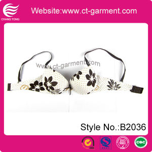 Hot Lady New Design Bra Lingerie (B2036) pictures & photos