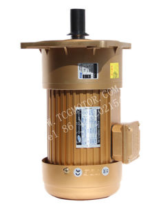 AC Induction Motor with Gear Reducer 220V 380V 5HP