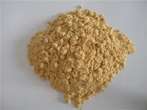 Natural Extract Soybean Oligosaccharides (SBOS) CAS No.: 10094-58-3