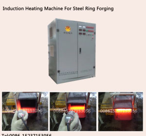 Induction Heating Equipment for Steel Ring Hot Forging
