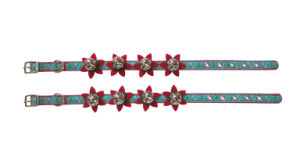 Dog Collar with Bells and Flowers