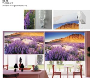 Printed Daylight Roller Blind for Windows (CB-43) pictures & photos