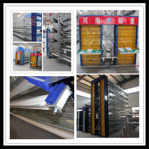International Steel Standard Chicken Cage for Hot Sale pictures & photos