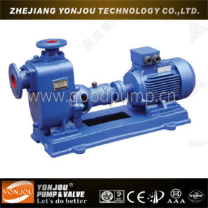 Self-Suction Wine Pump (JMZ) pictures & photos