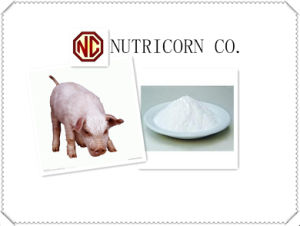High Quality Threonine Feed Addtive for Feed pictures & photos