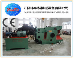 Hydraulic Metal Shear (Q43-800) pictures & photos
