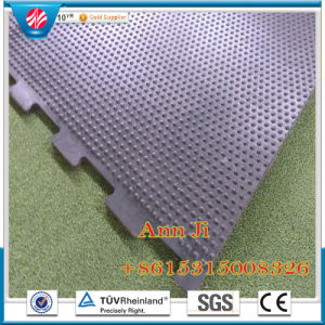 Anti Slip Stable Mats, Acid Resistant Horse Stall Tile/Mats pictures & photos