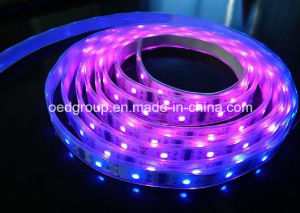 RGB SMD5630 IP65/68 60LEDs LED Flexible Stripe for Outdoor Decoration pictures & photos