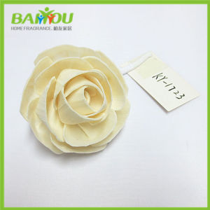 New Products Natural Sola Flower Diffuser pictures & photos