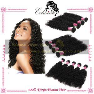 Kinky Curly Human Hair Extension/Brazilian Virgin Hair Extension/Remy Hair