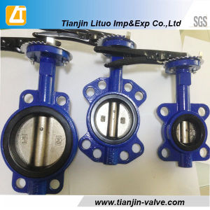 Lug Type Butterfly Valve with Pin pictures & photos