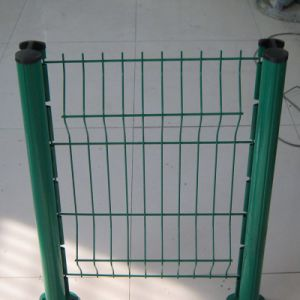 PVC Coated Welded Wire Mesh Fence for Sale pictures & photos