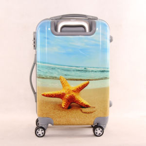 The New Fashion Starfish Pattern Travel Luggage Box Chassis Men and Women Pull Box Mute Universal Wheel 20 Inches pictures & photos